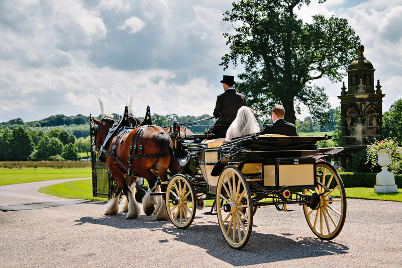 Horse and carriage ride for the bride and groom