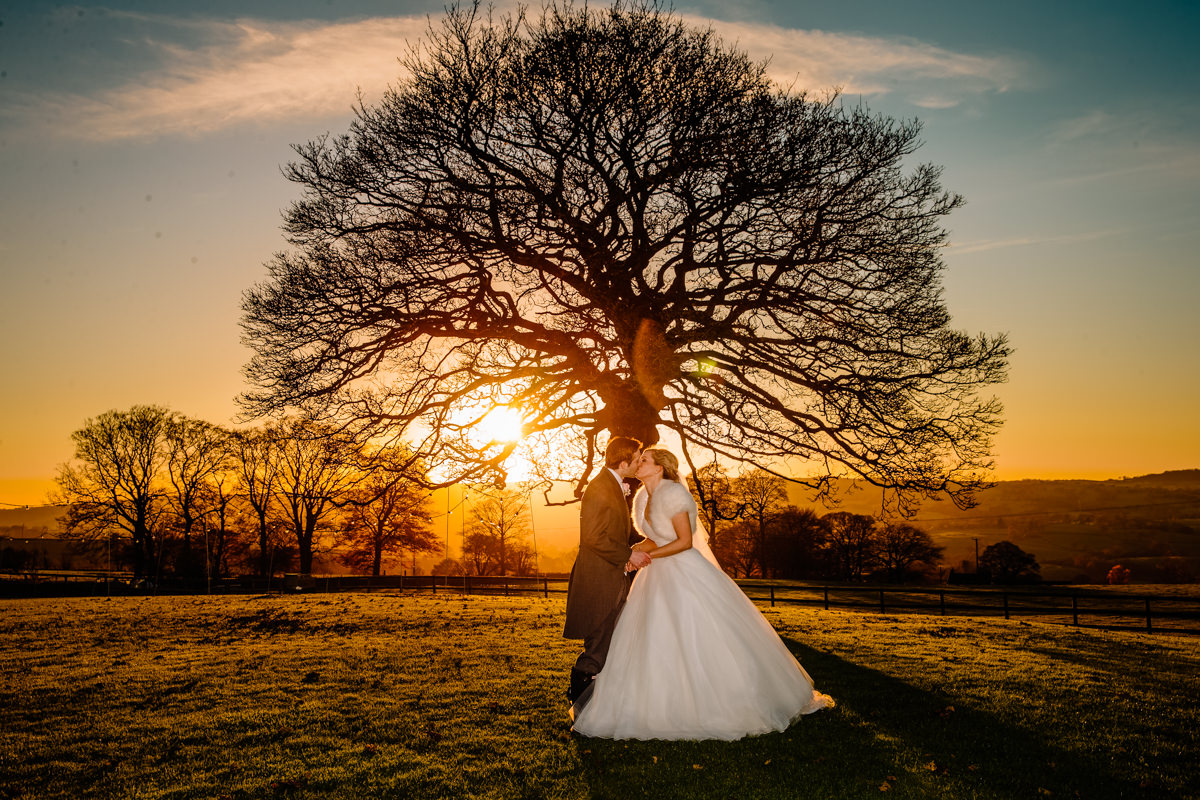 Sunset at Heaton House Farm in front of the sycamore tree