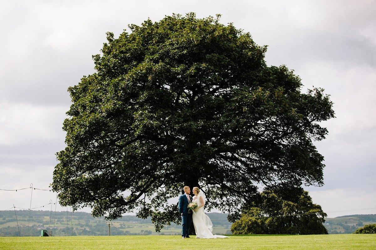 The Sycamore tree at Heaton House Farm
